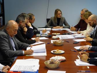 foto durante a reunión dos GES á que asistiron a Fegamp, a Dirección Xeral de Administración Local, a Dirección Xeral de Emerxencias, a Dirección Xeral de Montes e as deputacións.
