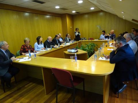 Teresa Gutiérrez nunha presentación ante a Comisión Executiva da Fegamp