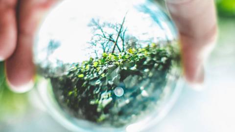 man suxeitando unha esfera transparente con natureza de fondo