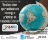 WEBINAR IGAPE - EMPREGO E PRÁCTICAS EN COMERCIO EXTERIOR